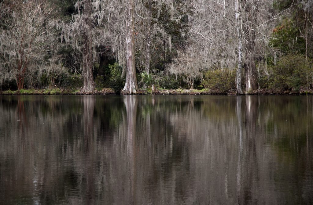 winter-bayou-1331714-1024x672