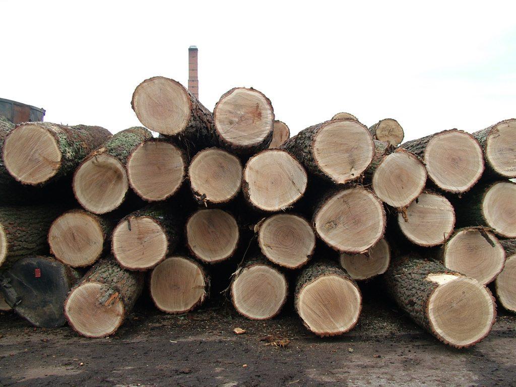 oak-logs-1511548-1-1024x768