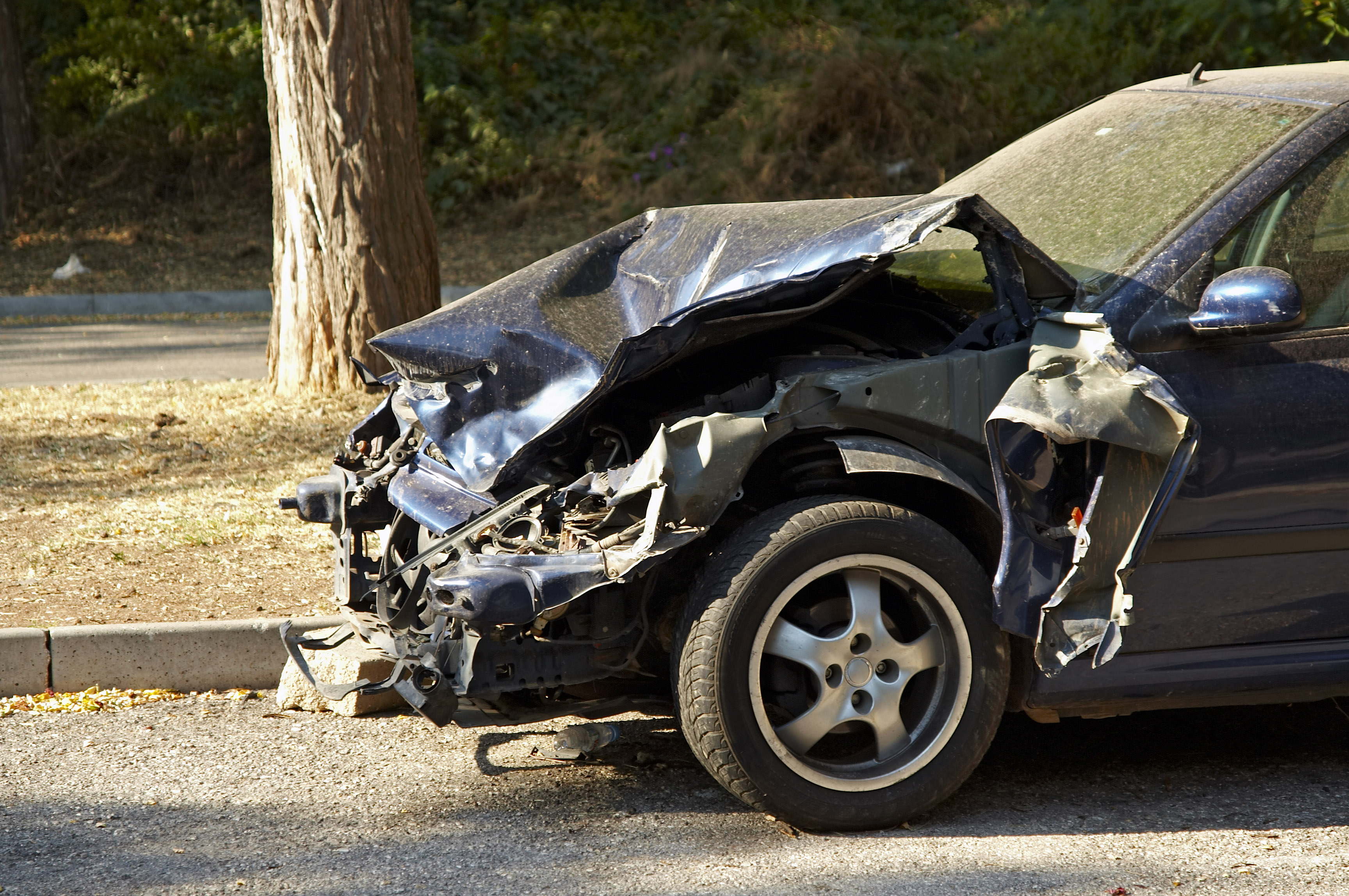 The Chain Reaction Automobile Accident on a Louisiana Highway and ...