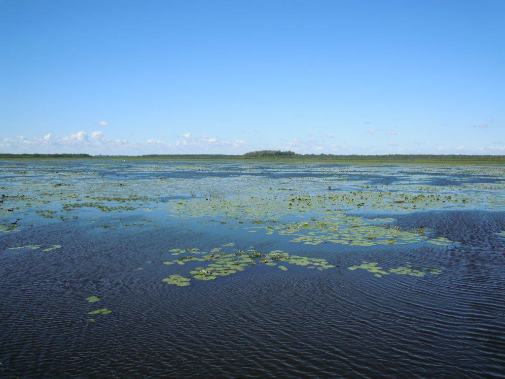 lake-reserve-1634943-1024x768