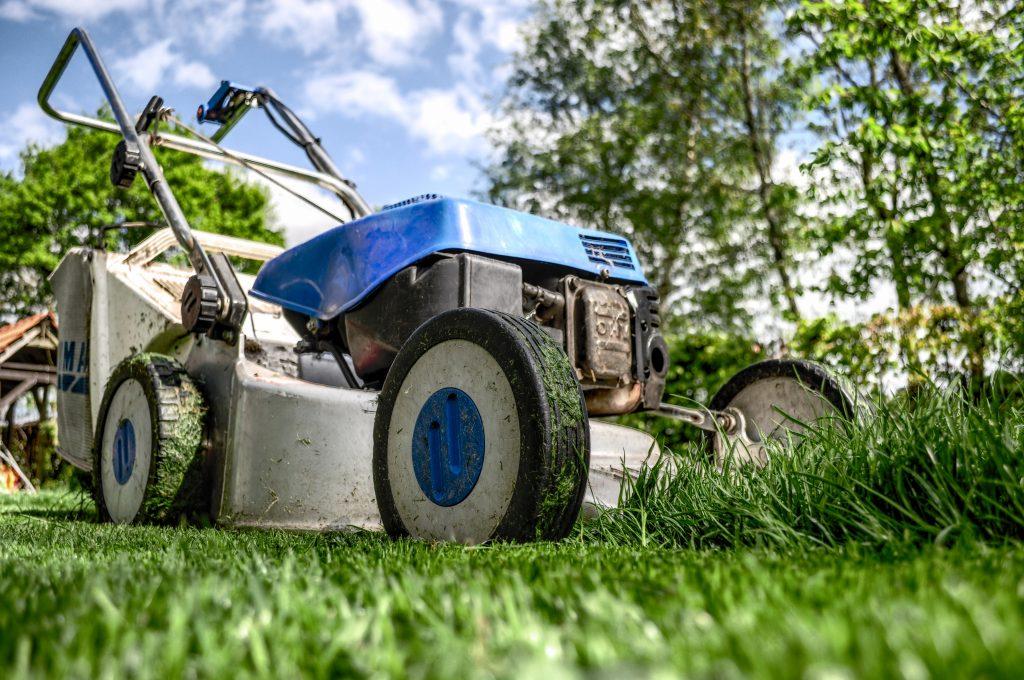 garden-gardening-grass-589-1024x680